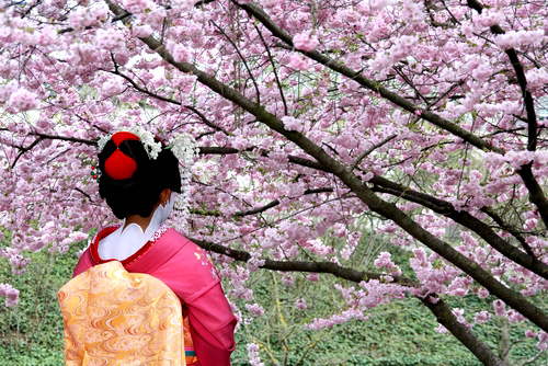 Fun in Japan -Travelzoo Special - Charming Travel Destinations